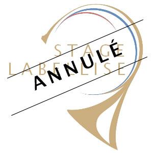 Stage labellisé région Pays-de-Loire, St Germain d'Arcé (72) @ Château d'Amenon | Saint-Germain-d'Arcé | Pays de la Loire | France