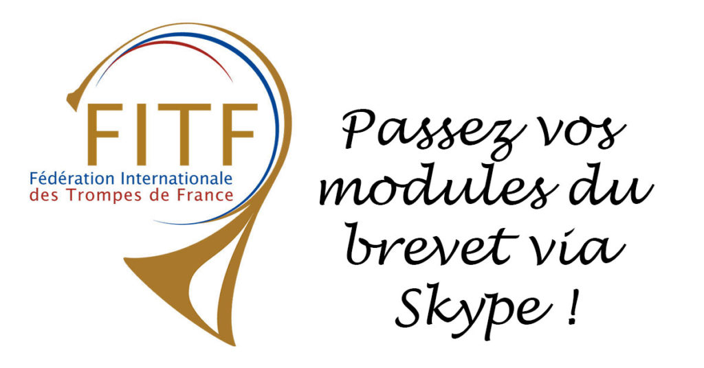 Modules du brevet via Skype