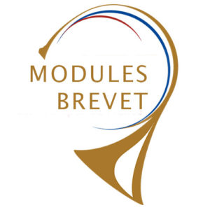 Modules du brevet via Skype @ Skype