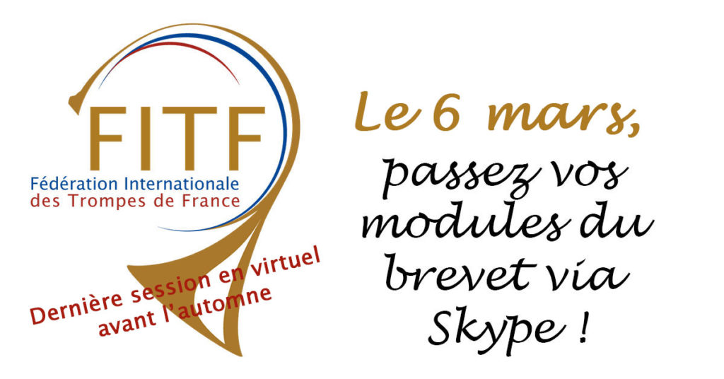 Modules du brevet via Skype